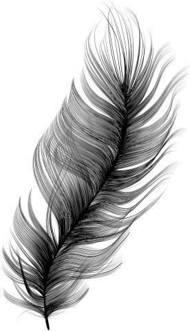 Zielsontwikkeling - Hologram van de Ziel (Feather)